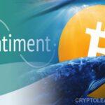Cá voi đẩy mạnh tích lũy, giá bitcoin tăng vọt